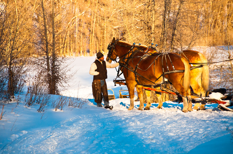 Sleigh Ride at Stillman Ranch, Rocky Mountain Recreation, Park City, UT