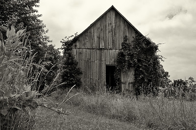 Calvert County MD barn