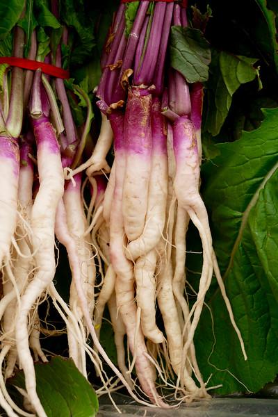Shiga Turnip