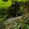 Tiny waterfalls of Silver Falls