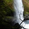 Waterfall at Silver Falls, Oregon
