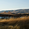 Dalles Bridge, Oregon