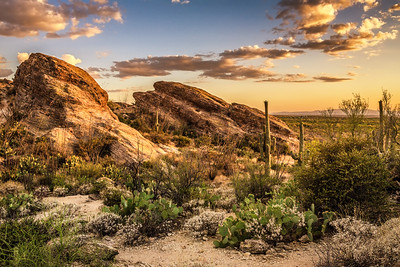 Sunset over Javelina Rocks in Saguaro National Park