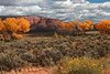 Colorful Fall Canyon Valley View