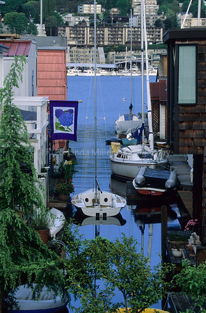 Boats & Houseboats, Waterfront of Union Lake, Seattle, Washingon