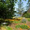 Lookout at Wiskeytown Lake, California