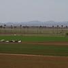 Yuma farms from Arizona College