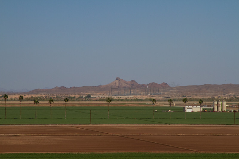 Yuma Farms near Arizona Western College