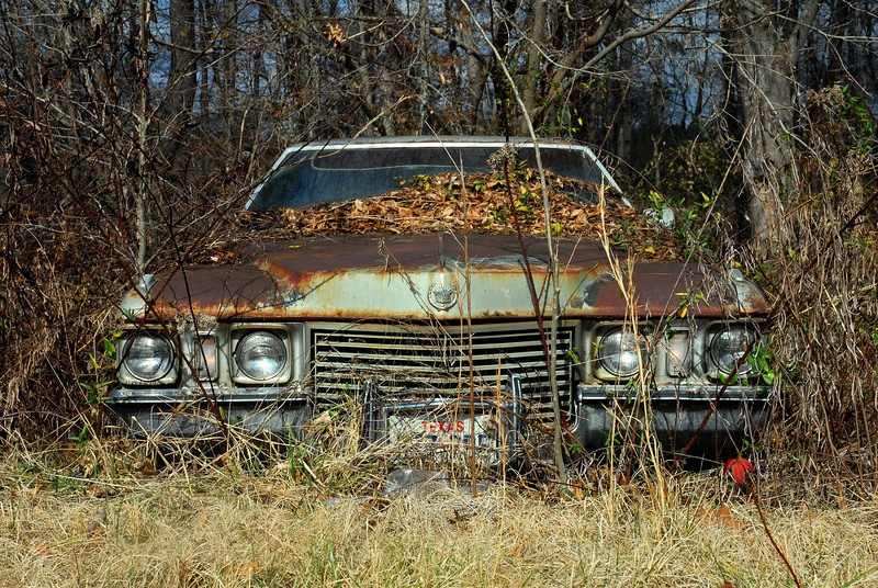 Greene County (GA) February 2010