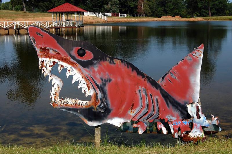 Taliaferro County (GA) 2007