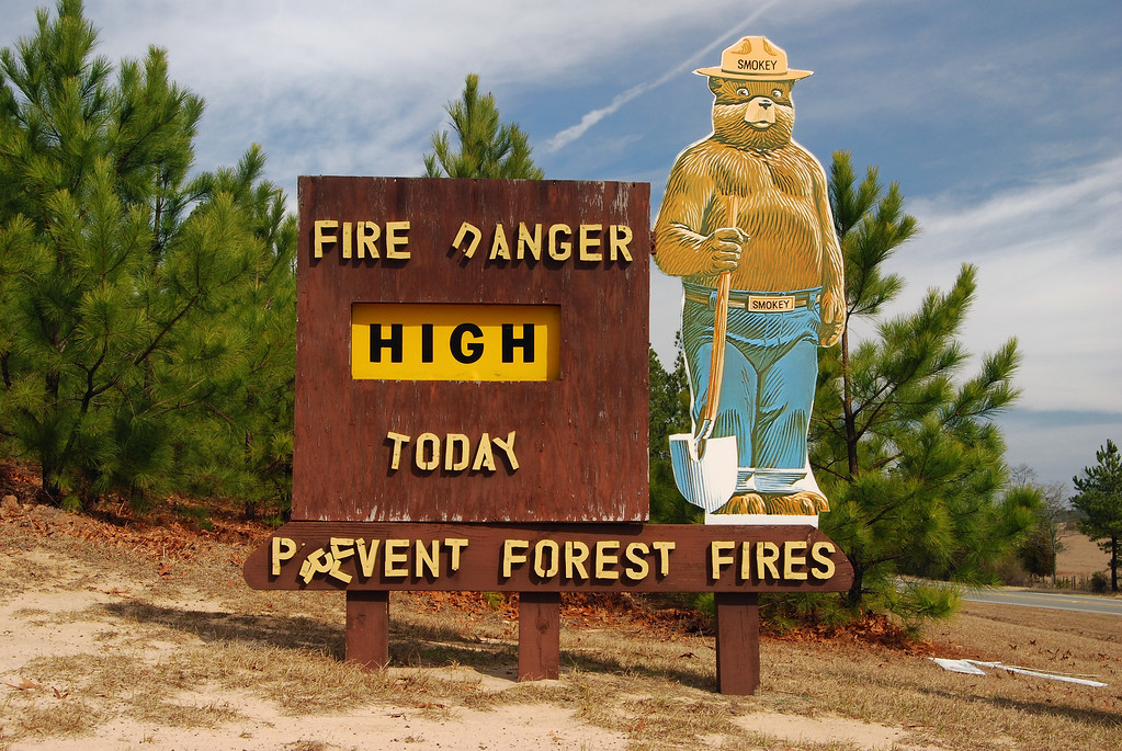 """Hancock County (GA) 2008<br /> <br /> Due to a shortage of fire-fighters during WWII, the Forest Service created the Cooperative Forest Fire Prevention Campaign in an effort to raise awareness of the danger of forest fires and maybe help prevent some of them. In 1942 Walt Disney let the Forest Service use his newest creation """"Bambi"""" for advertising which turned out to be very well received by the public. However, the loan of Bambi expired after one year, and the Forest Service decided to make a bear the symbol for its campaign. The first Smokey Bear poster appeared on August 9, 1944 (considered Smokey's birthday) and by 1952 Smokey was such a huge commercial success that an Act of Congress passed to take Smokey out of the public domain and place him under the control of the Secretary of Agriculture. The Act provided for the use of collected royalties and fees for continued education on forest fire prevention.<br /> <br /> When in 1952 Steve Nelson and Jack Rollins wrote the hit song """"Smokey The Bear"""", adding a """"the"""" between """"Smokey"""" and """"Bear"""" in order to keep the song's rhythm. As a result, much confusion ensued as Smokey Bear became incorrectly known as """"Smokey The Bear"""".<br /> <br /> After a devastating fire in New Mexico in the spring of 1950, a black bear cub was found clinging to a tree that had saved his life but burned his paws and hind legs. He was rescued and treated for his burns; when the media picked up the little cub's story, he became an instant celebrity. It was decided to make him the spokesbear for the fire prevention campaign and he was put up in the National Zoo in Washington DC where he lived for 26 years. It is said that he was so popular that he had his own zip code. After his death in November 1975, Smokey's remains were returned by the government to Capitan, New Mexico, and buried at what is now the Smokey Bear Historical Park.<br /> <br /> The Smokey Bear campaign is the longest running public service campaign in U.S. history, with its fore"""