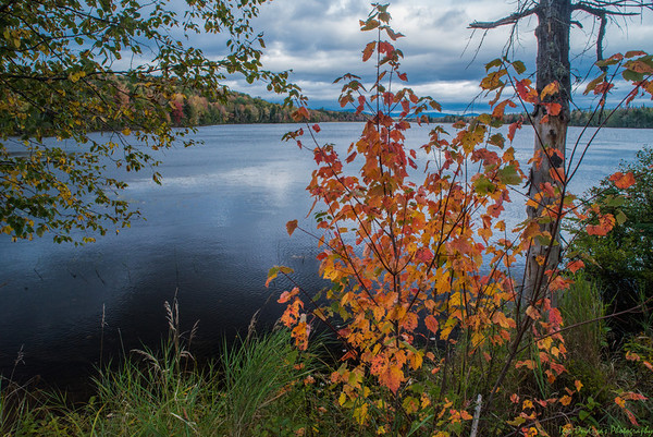 Vacationland-Maine