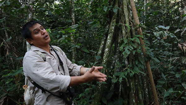 Our guide, Yury Torres, a local from the Madre de Dios river area