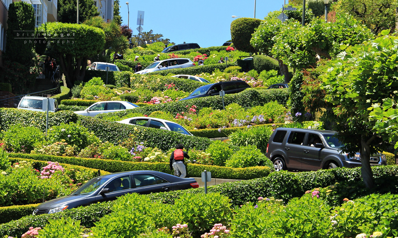Lots of Hills! Lombard Street