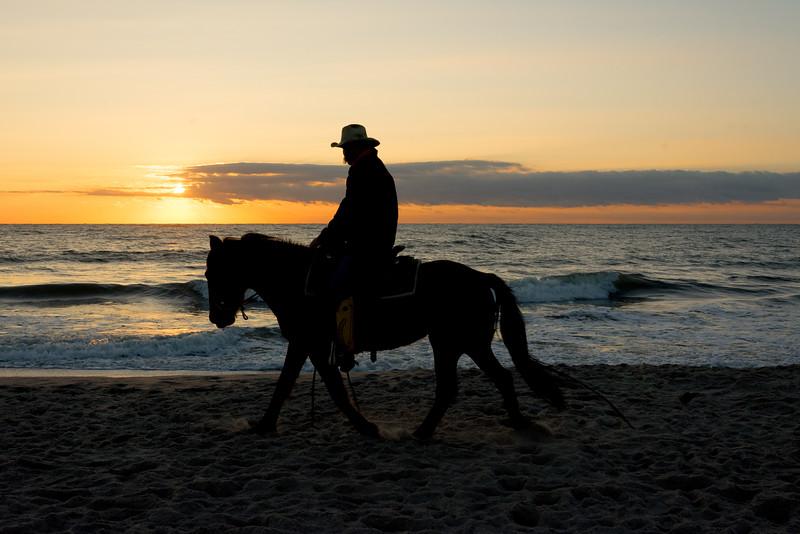 On the Beach, sunrise and horses