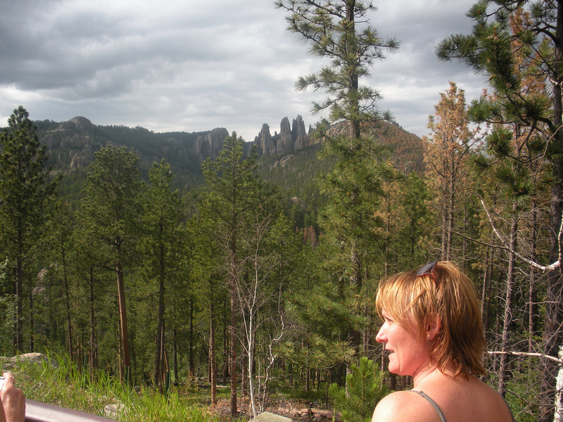 Needles Scenic drive in Custer State Park