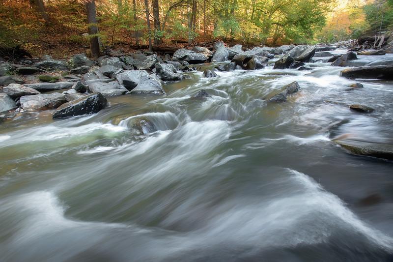 Rapids Section