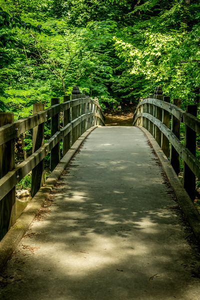 Rapids Footbridge