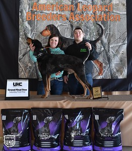 Field Trial and Treeing Contest