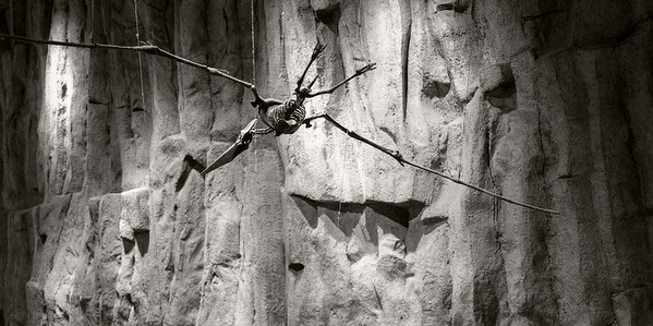 Strings Attached _ bw