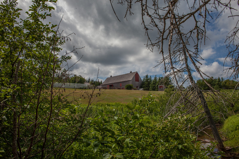 Window to the Farmstead