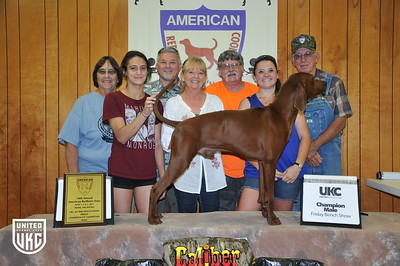 2017 American Redbone Days Friday Champion Male