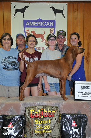 2017 American Redbone Days Friday Grand Champion Female
