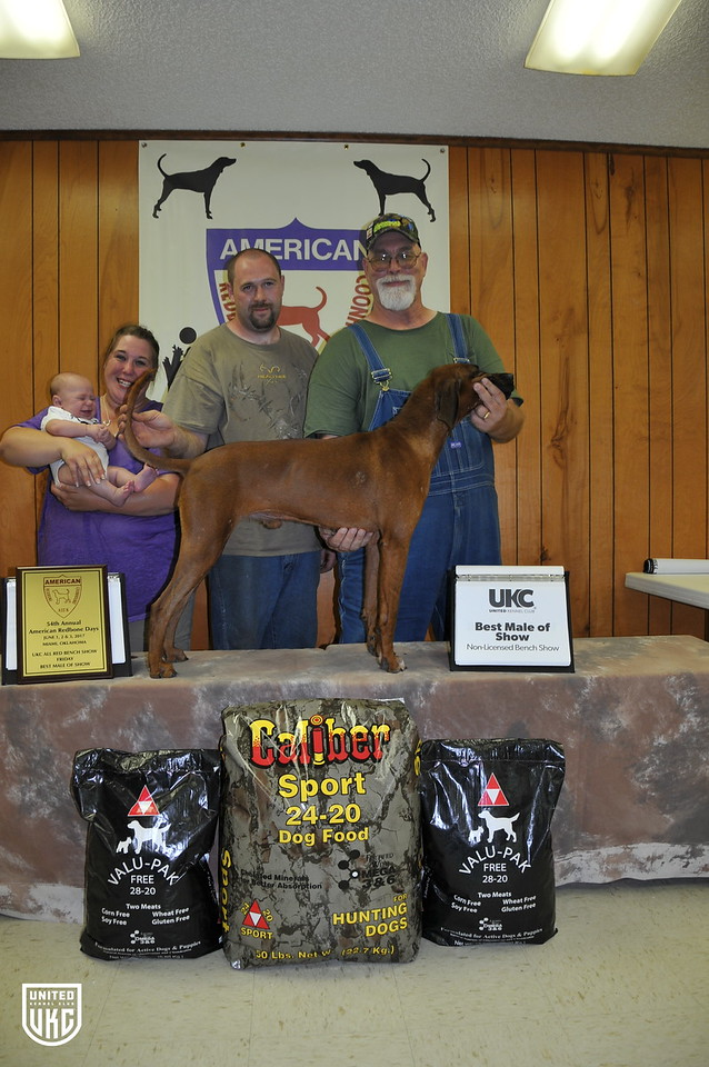 2017 American Redbone Days Friday Best Male of Show
