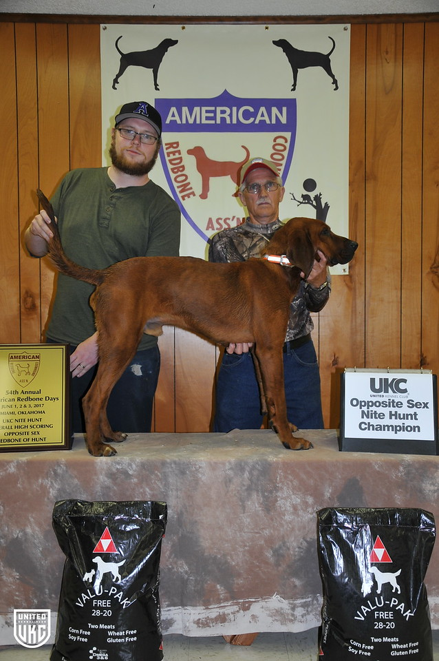 2017 American Redbone Days Opposite Sex Dog of Hunt