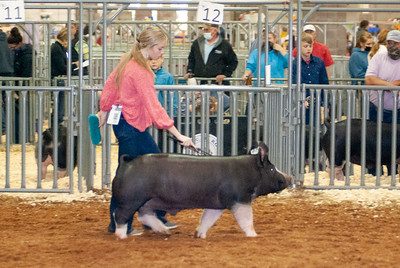 americanroyal2020_barrows007