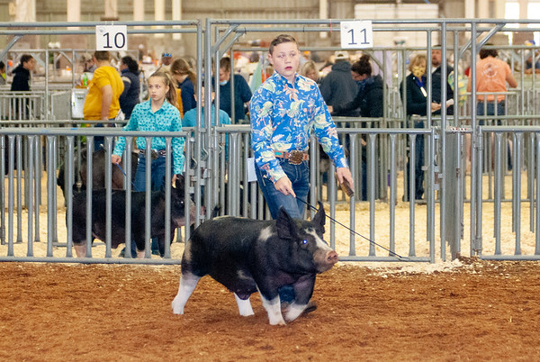 americanroyal2020_barrows009
