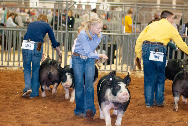americanroyal2020_barrows021