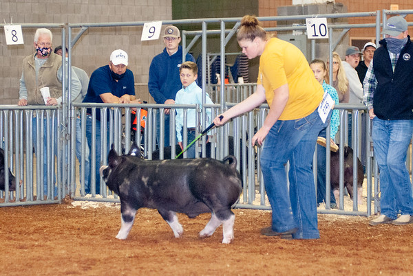 americanroyal2020_barrows001