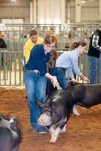 americanroyal2020_barrows016
