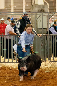 americanroyal2020_barrows014