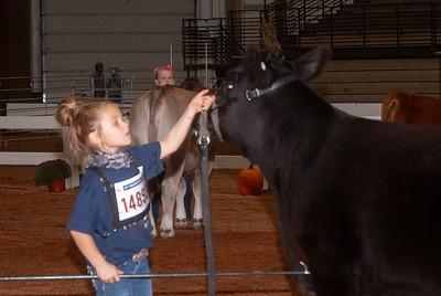 americanroyal2020_cattle_showmanship023