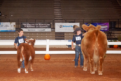 americanroyal2020_cattle_showmanship020