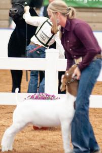 americanroyal2020_goats_market019