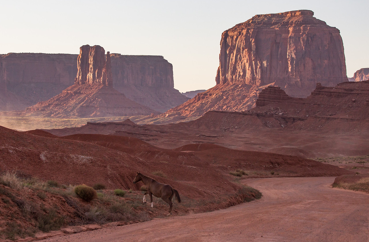 A Wild Horse with the Buttes in the background