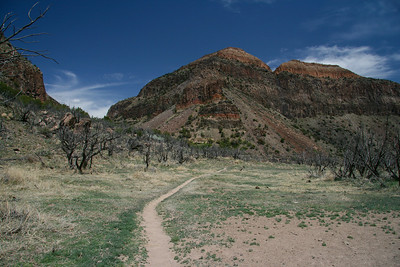 Trail near the Rio Grande