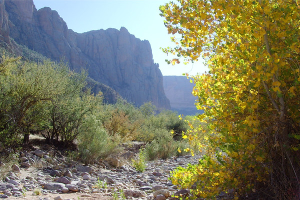 A colorful wash in the Superstition Mountains east of Apache Junction, Arizona.