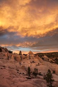 Pine Park Sunset, Utah