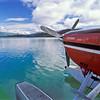 Cessna on lake