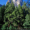 Merced River & El Capitan