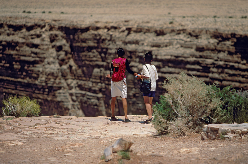 Ilavenil Saroja Little Colorado R Canyon
