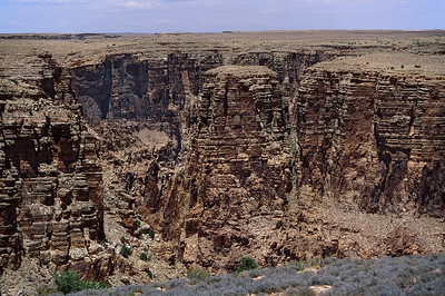 Canyon of Little Colorado River