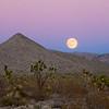 moonrise over Mojave Desert