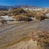 banks of Salt Creek