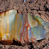 polychrome petrified wood shard