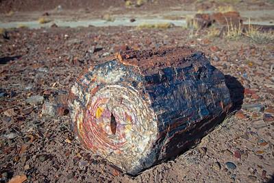 stone stump